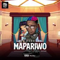 Zinoleesky - Mapariwo (Prod. by Tripsss)