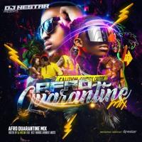 🔥 Afro Quarantine Mix 2020 ☣ DJ Nestar