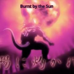 Burnt by the Sun (PROD. AI$) Non-Mastered . V 1 / WAV File