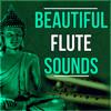 Irish Flute Music