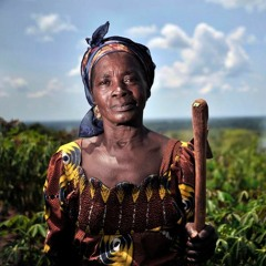 Sustainable private investments in food systems