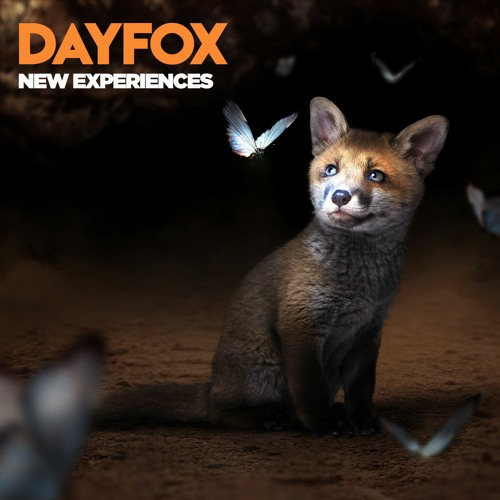 DayFox - New Experiences (Free Download)