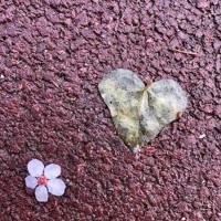 c'est quoi l'amour ?
