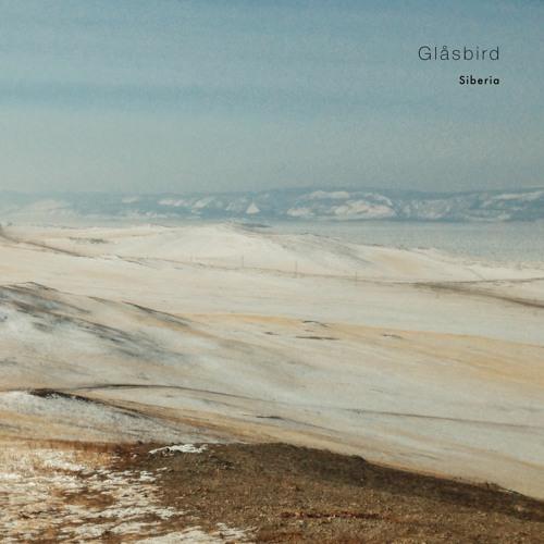 wlr099 Glåsbird - Siberia