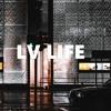 Download LV Life - Lady Du X Busta 929 X Mr JazziQ Type Beat I Amapiano Type Beat 2021 I (prod. FIBBS) Mp3