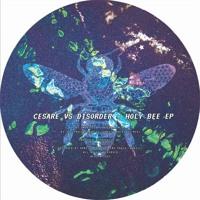 A2 Cesare vs Disorder - São Paulo Concrete Jungle (Original Mix)
