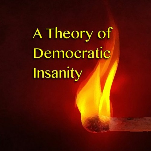 A Theory of Democratic Insanity