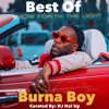 Official Best Of Burna Boy Mix (African Giant Album)