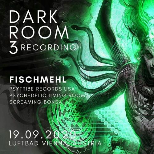 Fischmehl - Dark Room #3 on 19.09.2020