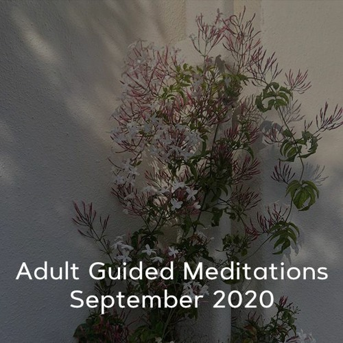 Adult Meditations - September 2020