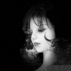 過剰殺戮セックスマシーン14歳ペニバン花井花子の愛のロードキル(Overkill and roadkill)/セクハラ恋愛極私論
