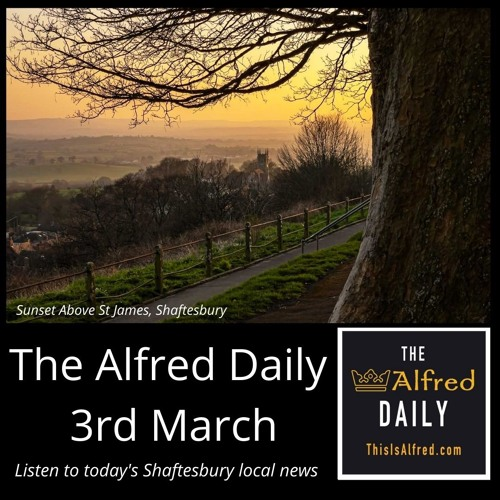 The Alfred Daily - 3rd March