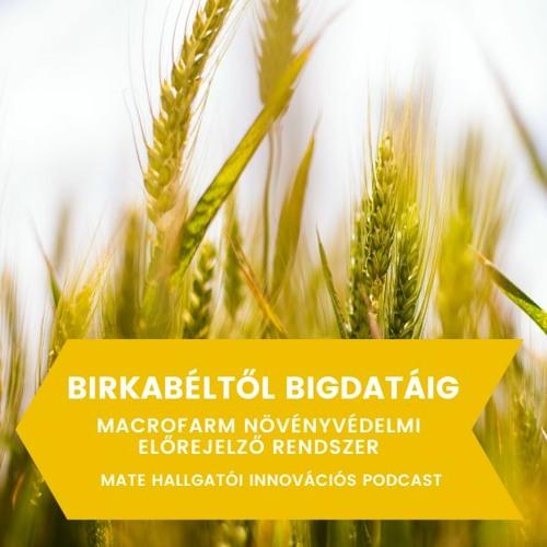 Birkabéltől Bigdatáig - Macrofarm Növényvédelmi Előrejelző Rendszer