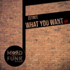 Zetbee - WHAT YOU WANT // MFR269