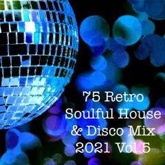 Soulful House & Disco Mix 2021 Vol.5