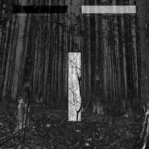Four Four Premiere: Chris Liebing - Something Half Way [Club Mix]