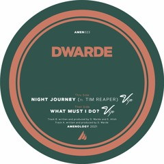 Dwarde & Tim Reaper - Night Journey VIP (Unmastered Preview) PREORDER