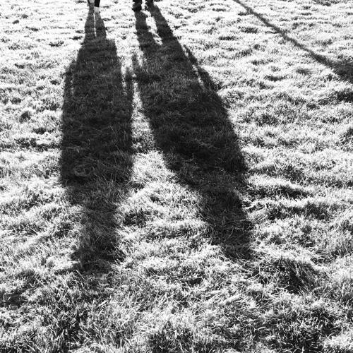 Six Adult Educators Reflect On Walking