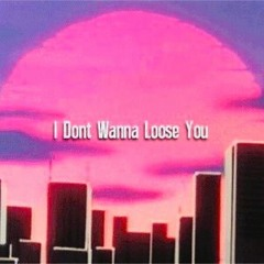 I Don't Wanna Lose You