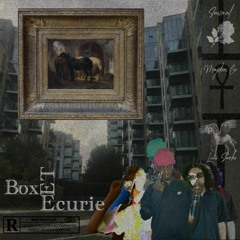 BOX ET ECURIES