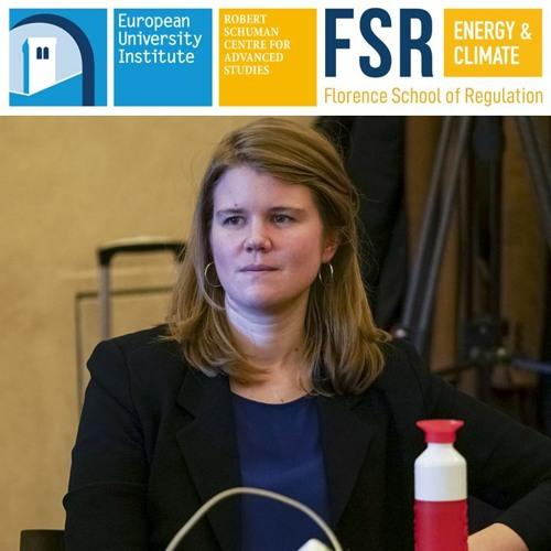A global observatory on new energy models | Alexandra Schneiders (University College London)