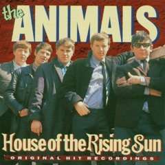 House Of The Rising Sun (The Animals)- Cover by Niklas Gröber