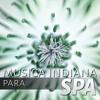 Musica Indiana para Spa