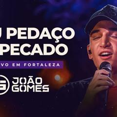 MEU PEDAÇO DE PECADO - João Gomes (DVD Ao Vivo em Fortaleza)