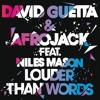 Louder Than Words (feat. Niles Mason) (Radio Edit)