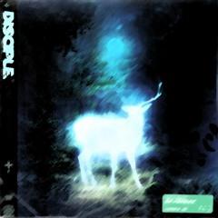 SKYBREAK - WILDFIRE (feat. MILLENNIAL TRASH) (GOOFY FLIP)