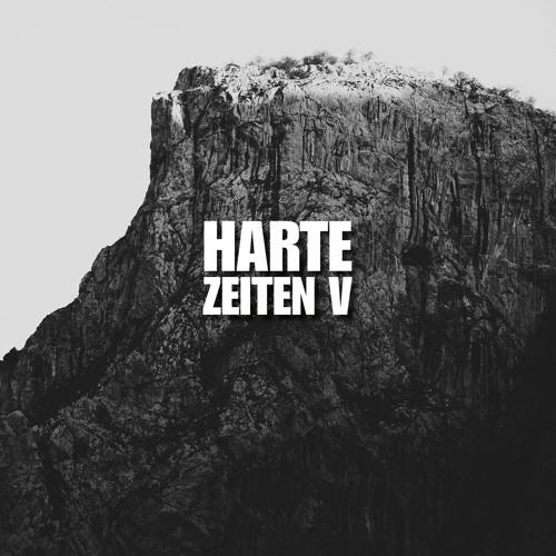 HARTE ZEITEN V by Birkenlauber