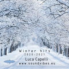 Winter Hits 2021 - Luca Capelli Dj