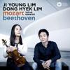 Mozart: Violin Sonata No. 18 in G Major, K. 301: I. Allegro con spirit