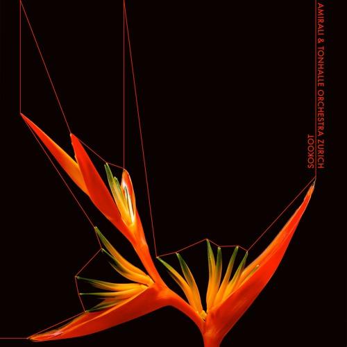 Amirali feat. Tonhalle Orchestra Zurich - Dismantle The Sun