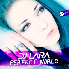 Dj Lara - Perfect world