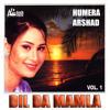 Download Dil Da Mamla Mp3