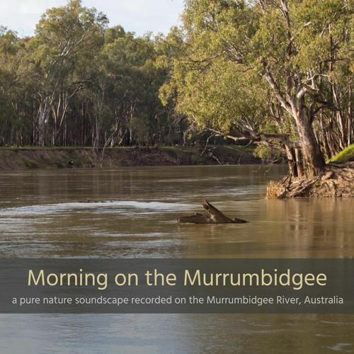 Morning on the Murrumbidgee River, NSW, Australia