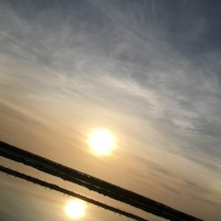 01 Finesterrae - Antelogos