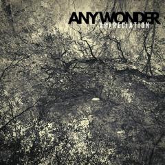 FCQ059 Any Wonder - Palm Springs (Thèmemoir Reimagined Remix)