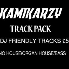 25 Dj Friendly Kamikarzy remixes £5 *READ DESCRIPTION*