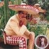 Golondrina Sin Nida (A Duo Con Alejandro Fernandez) (Album Version)