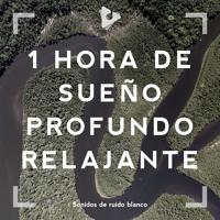 El ruido del río y agua blanca