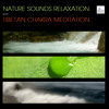 Ocean Rain, Soothing Rainstorm and Calming Sounds for Tinnitus. Natural Soundscape (Peaceful Nature Sounds and Soundscapes)