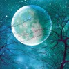 Download Rhythm Sanctuary Full Moon Ecstatic Dance Set 02/27/2021 Mp3