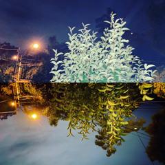 Beyoncè - Ghost [Flume Remix] (Netica Remix)