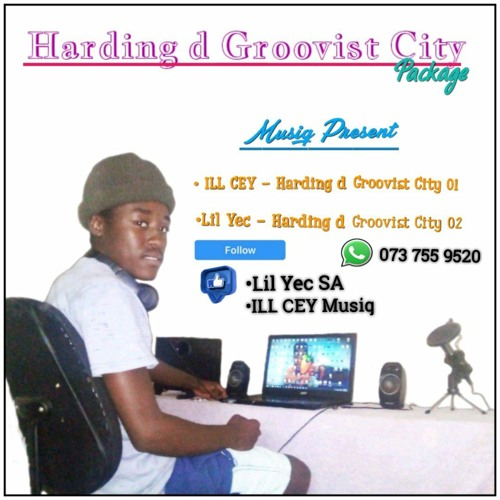 Harding d Groovist City 02