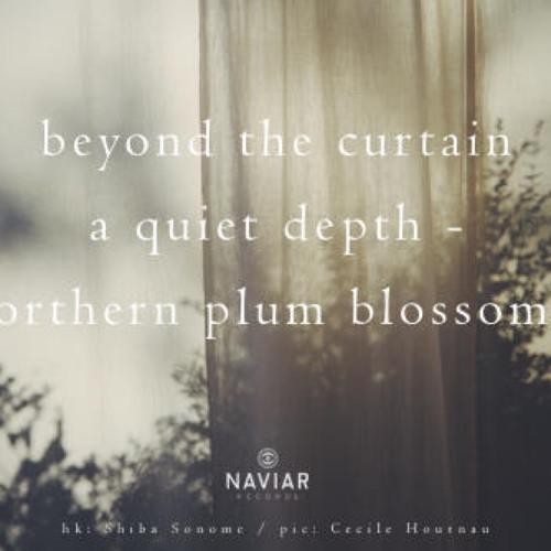 naviarhaiku381: beyond the curtain