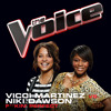 F**kin' Perfect (The Voice Performance)