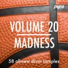 "Pyro Audio Volume 20 ""MADNESS"""