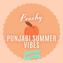 Punjabi Summer Vibes- SamarSounds